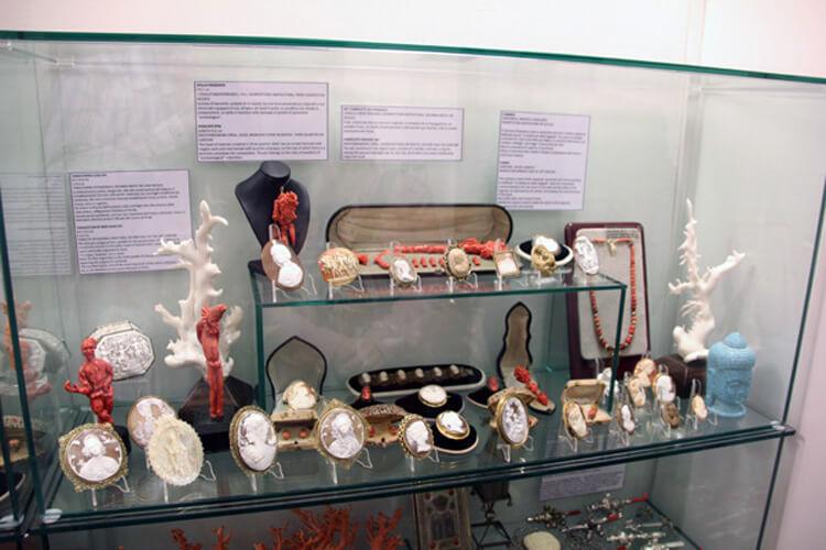 Museo Corallo