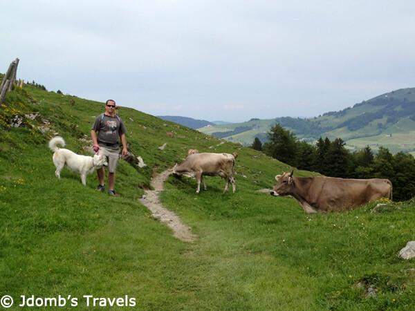 Wasseren in Switzerland