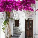 Jdombs-Travels-Mykonos-14