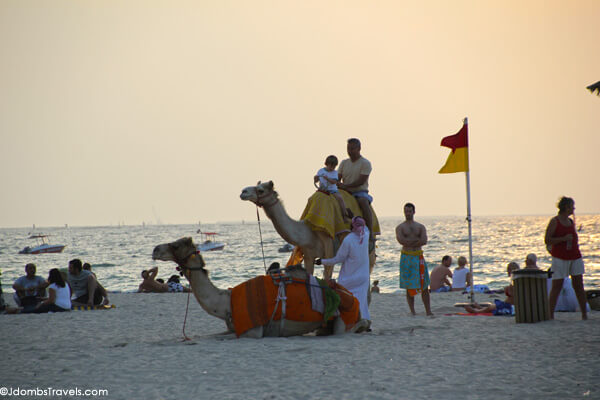 Amaseena at Ritz-Carlton Jumeriah Beach