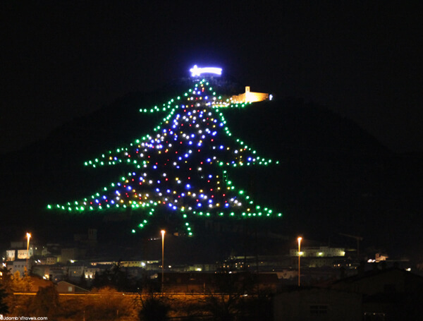 the worlds largest christmas tree - Largest Christmas Tree