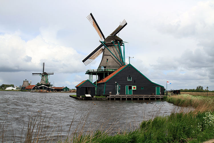 Several windmills along the river