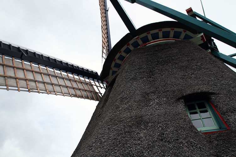 Looking up at De Kat Windmill