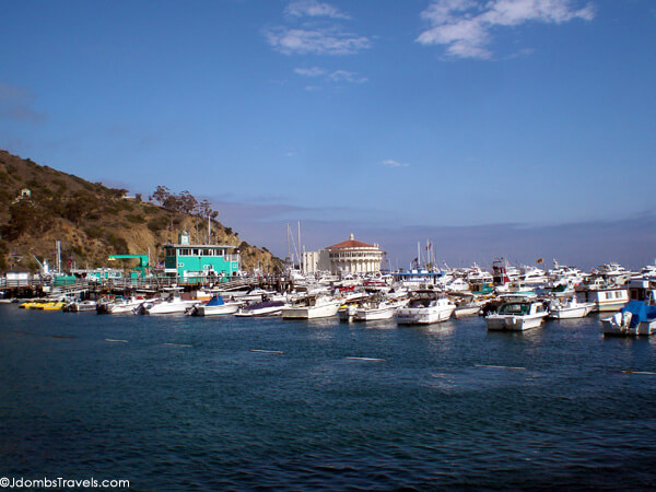 10 Things to do on Catalina Island - Luxe Adventure Traveler