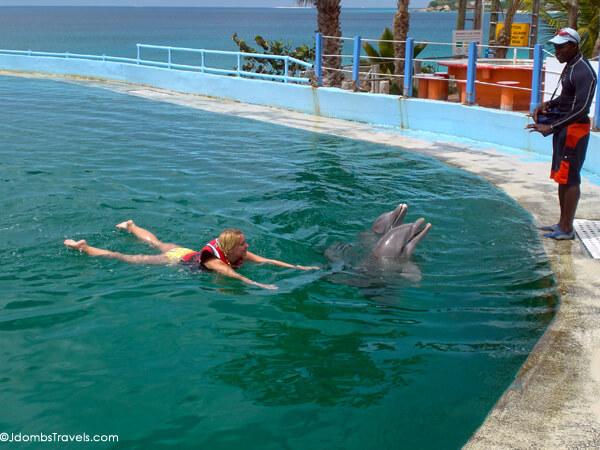 Dolphin Trainer for a Day - Luxe Adventure Traveler
