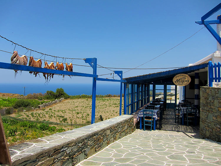 Four octopus dry on the line outside the restaurant Mimis in Ano Meria, Folegandros
