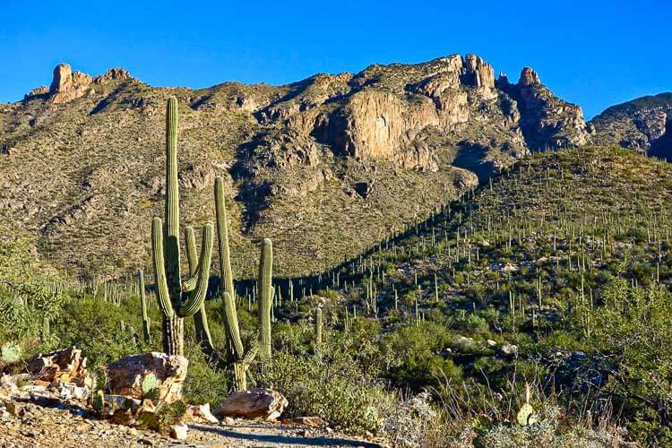 Finger Rock Trail on Mount Kimball in the Catalina Mountains Near Tuscon