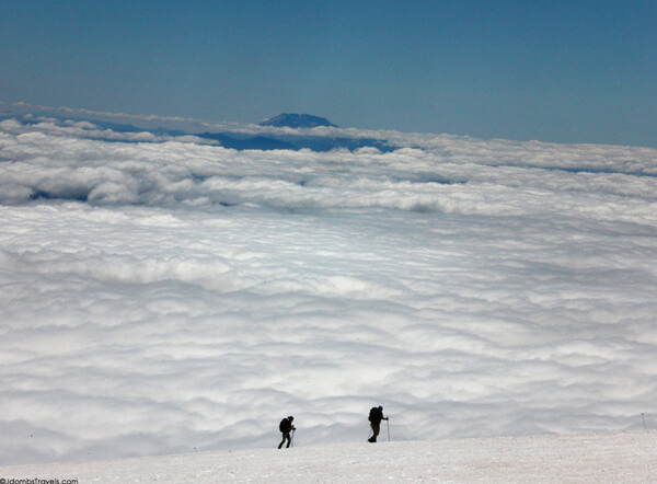 Mount Rainier climbers  walking on clouds