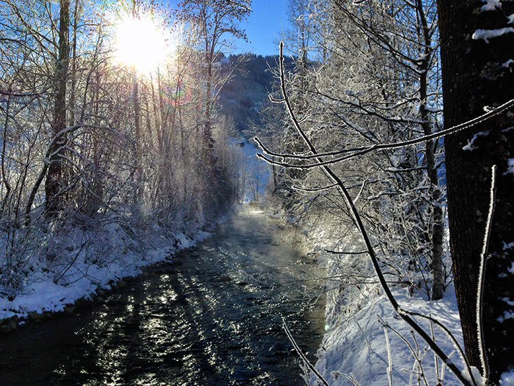 Hiking along a river lined with snow covered trees