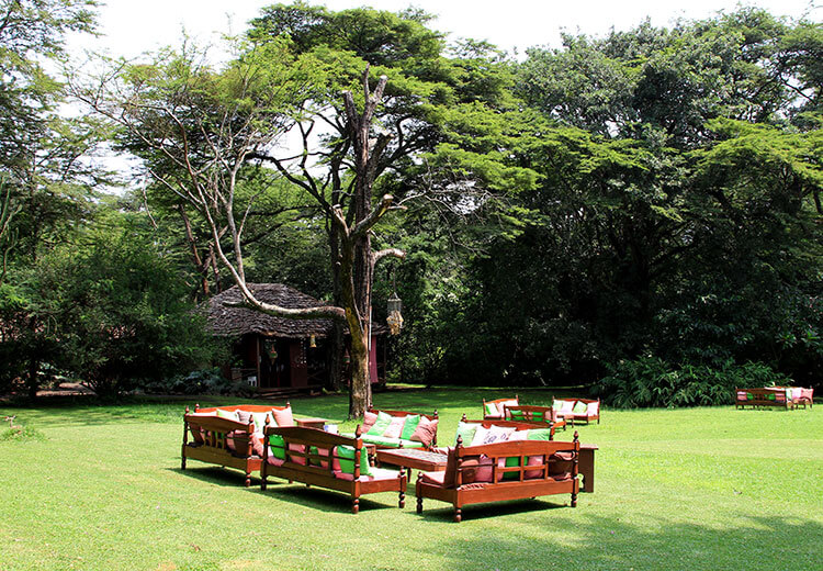 Outdoor cafe with tables and sofas set on the lawn at Burka Coffee Estate