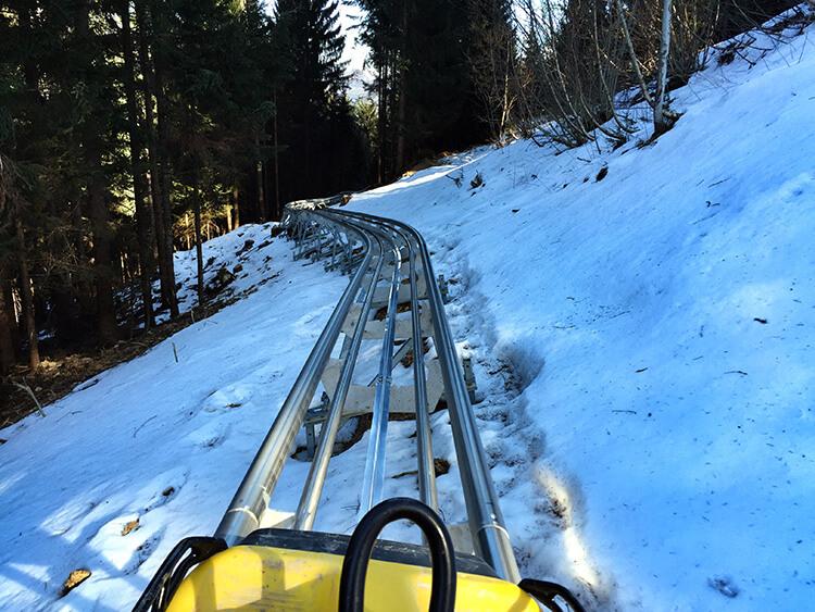Tarvisio Alpine Bob Coaster