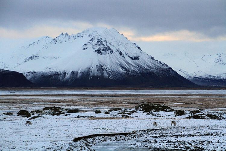 East Fjords, Iceland