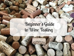 The Beginner's Guide to Wine Tasting