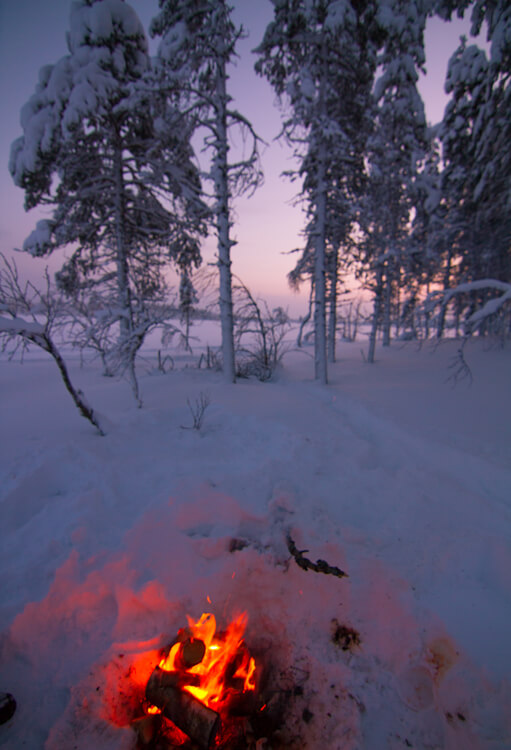 Snowmobiling in Swedish Lapland