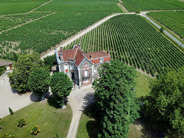 Drone aerial of Chateau Cantenac surrounded by grape vines