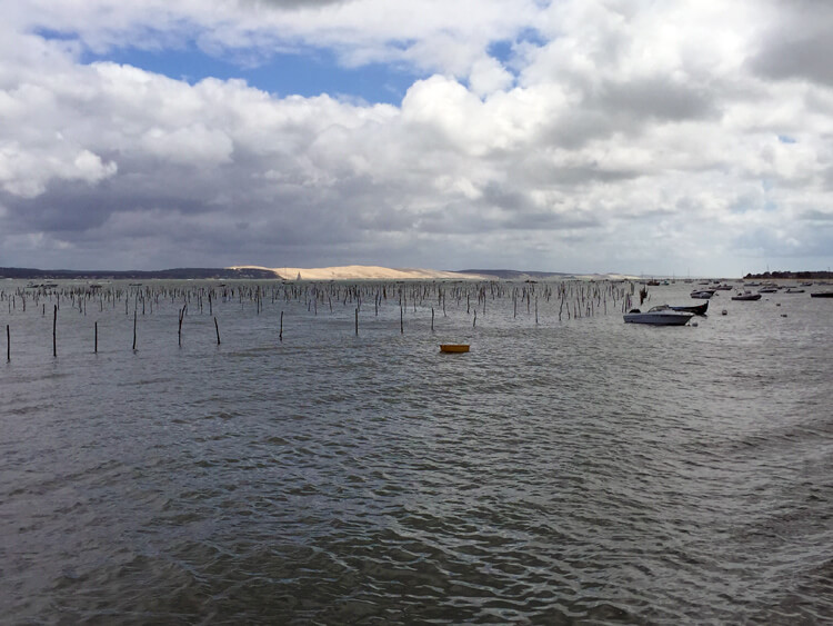 Arcachon Oyster Farms and Dune du Pyla