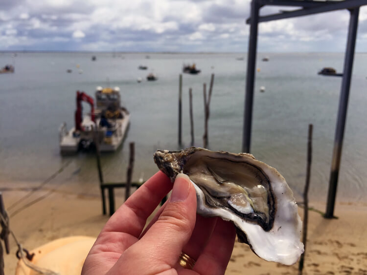 Arcachon oysters