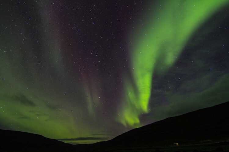 Iceland West Fjords Northern Lights