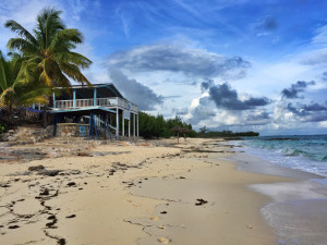 Sandy Toes Rose Island