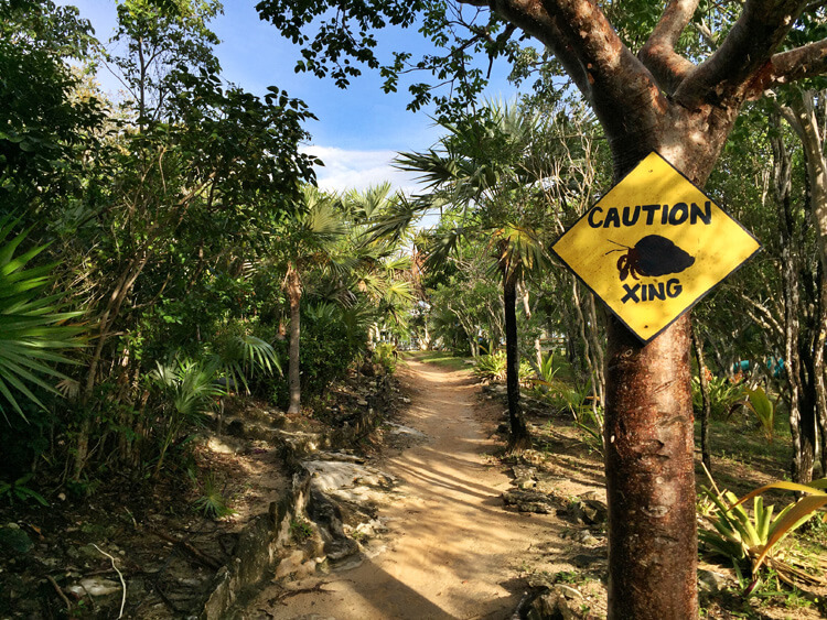 A hermit crab crossing sign hangs on a path at Sandy Toes on Rose Island, Bahamas