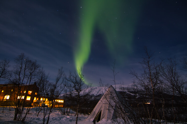 Green Northern Lights appear in a flame like pattern above a Sami lavvu in Abisko, Sweden