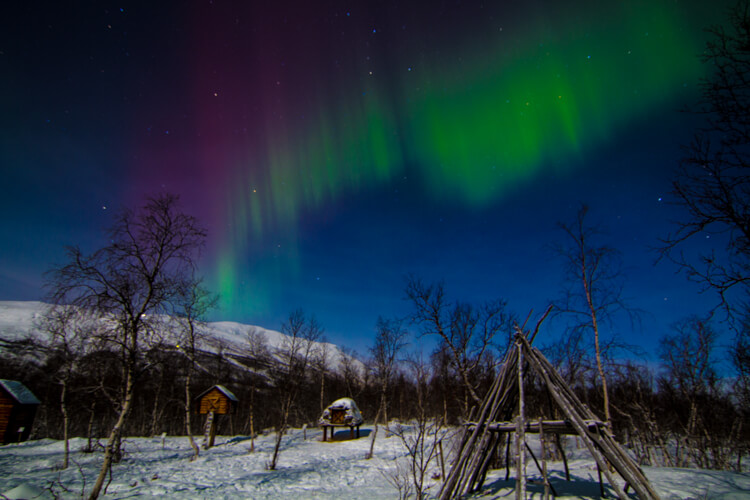 A streak of purple and green Northern Lights covers the entire sky and there are wooden Sami structures in the foreground