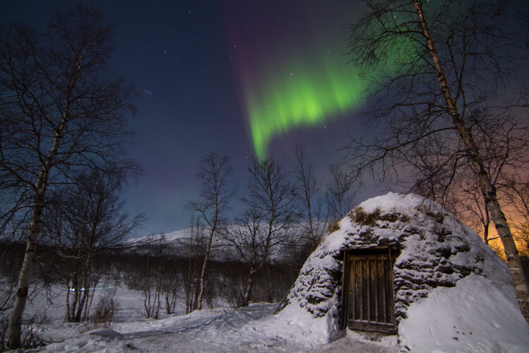A curtain of green and purple streaks across the sky over a hut built of sticks and wood