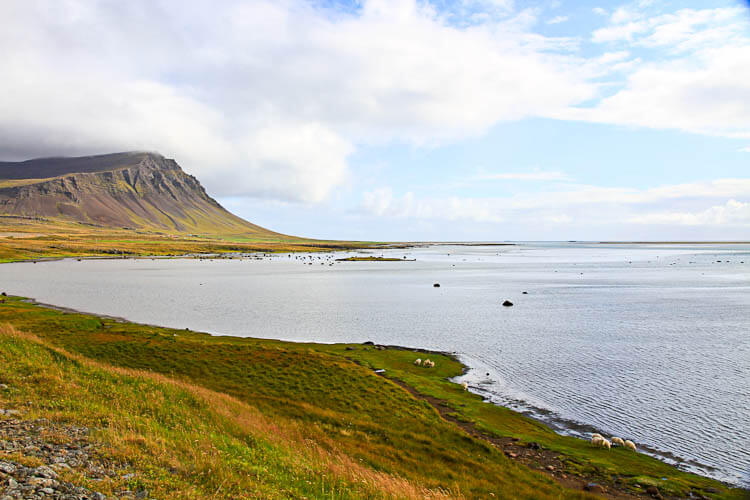 Driving Icelands Westfjords