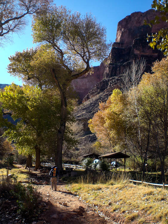 Indian Gardens Campground Grand Canyon