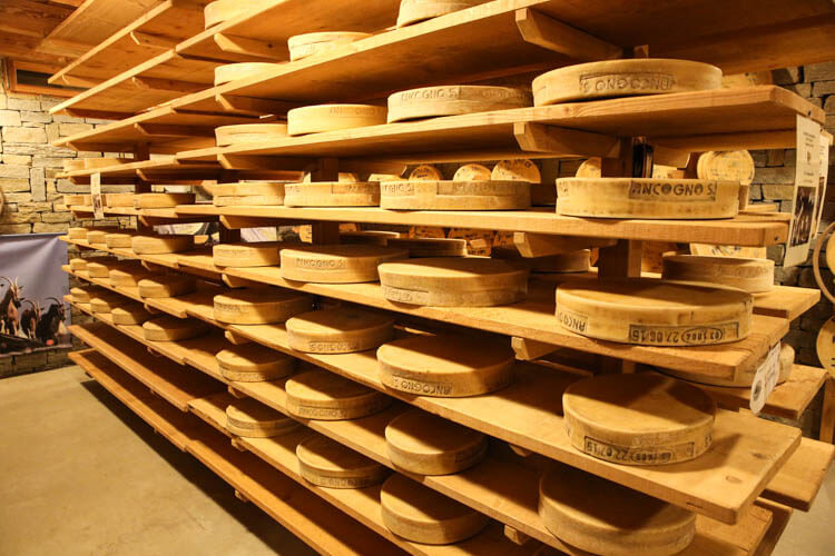 Bitto Storico Cheese