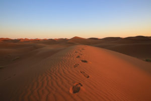 Luxury Glamping in the Sahara Desert