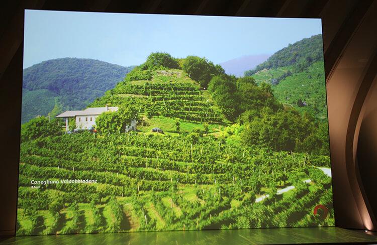 La Cite du Vin Bordeaux