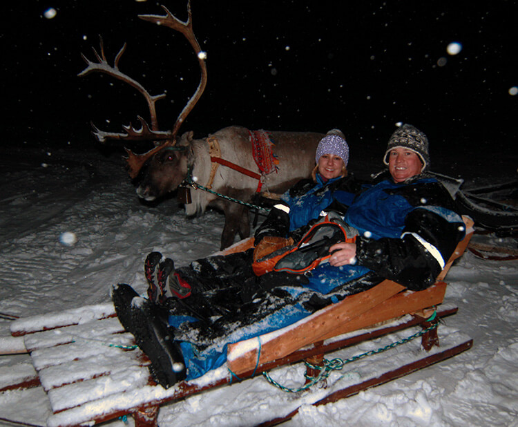 Reindeer sledding in Tromso, Norway