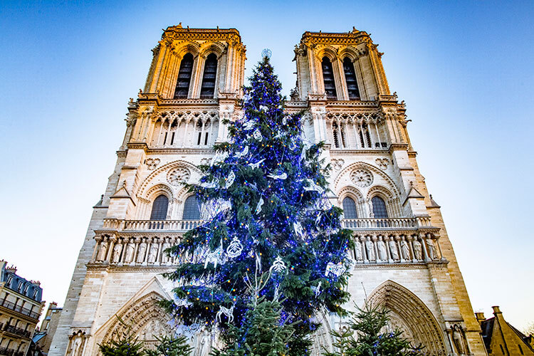 A Christmas tree stands outside the Notre Dame Cathedral in Paris France