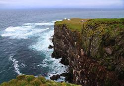 Látrabjarg Cliffs, Westfjords, Iceland