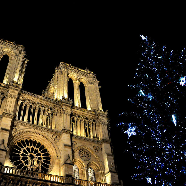 Notre Dame and the Christmas tree light up at nighttime in Paris, France