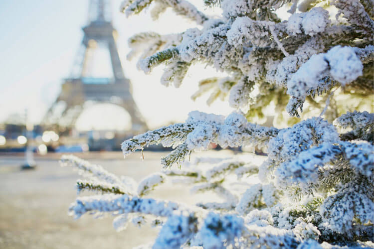 A rare snow in Paris dusts a fir tree near the Eiffel Tower in Paris, France
