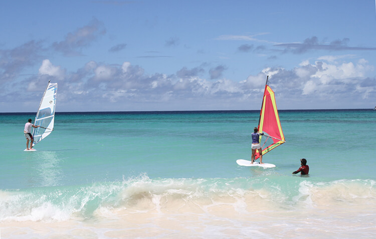 Windsurfing Barbados