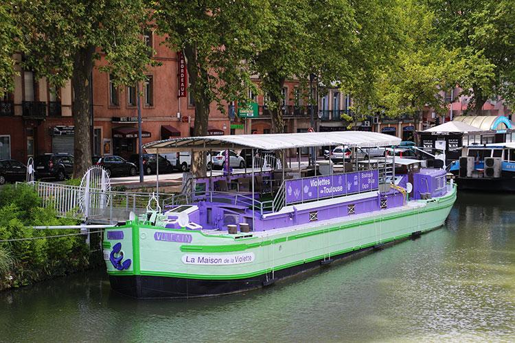Maison de la Violette, Toulouse, France