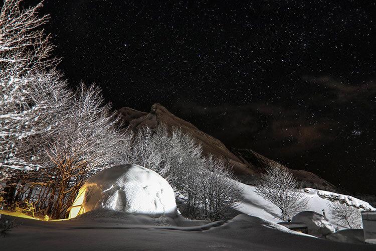 Wild Dome under the stars