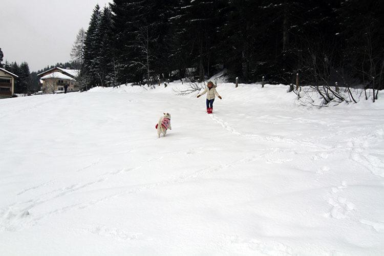 Emma running toward me in a snowy field in Filzmoos, Austria