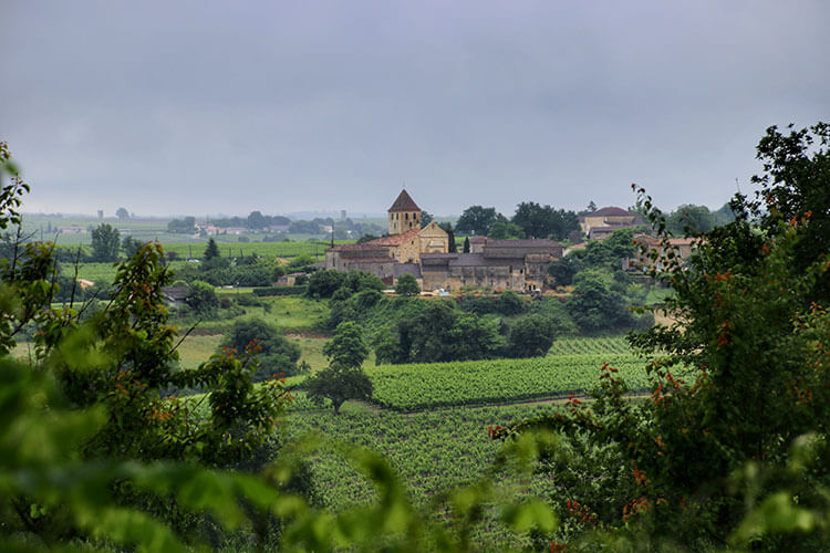Looking out from the hill top at Château de Bonhoste over the vines and to the village of Saint-Jean-de-Blaignac