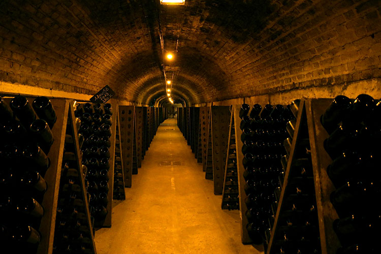 Inside one of the tunnels with bottles placed on the riddling boards at Moet & Chandon