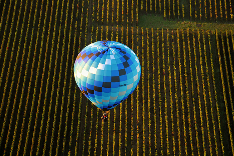 A blue checked balloon with plots of vineyards stretching out below it in Saint-Émilion