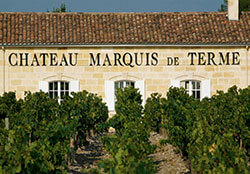 Chateau Marquis de Terme's tasting room seen from in the vineyard