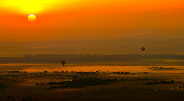 Hot air balloons dot the sky as the sun rises on a misty morning in the Masai Mara