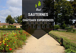 Best Sauternes Chateaux to Visit in Bordeaux France