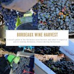 Guide to the Bordeaux Wine Harvest Pinterest Pin