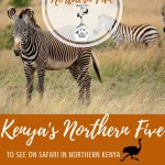 Kenya's Northern Five Pinterest Pin It For Later