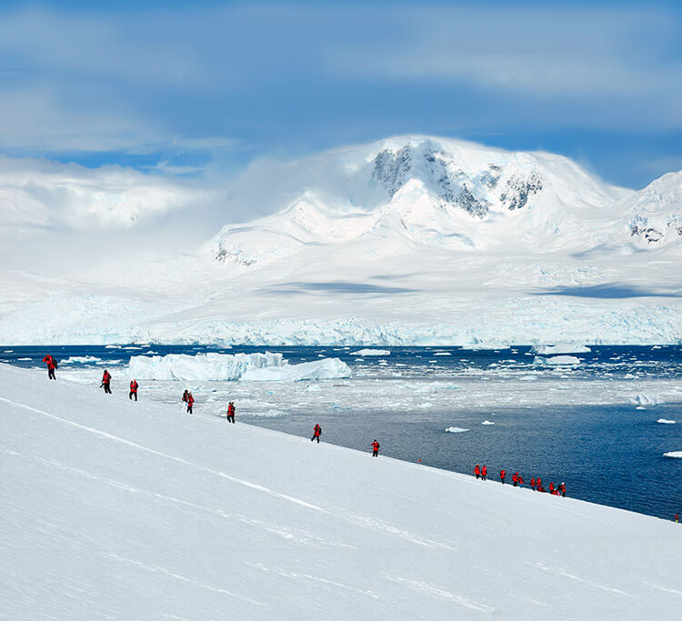 Passengers go for a hike on the Antarctica continent with icebergs floating in the bay below them